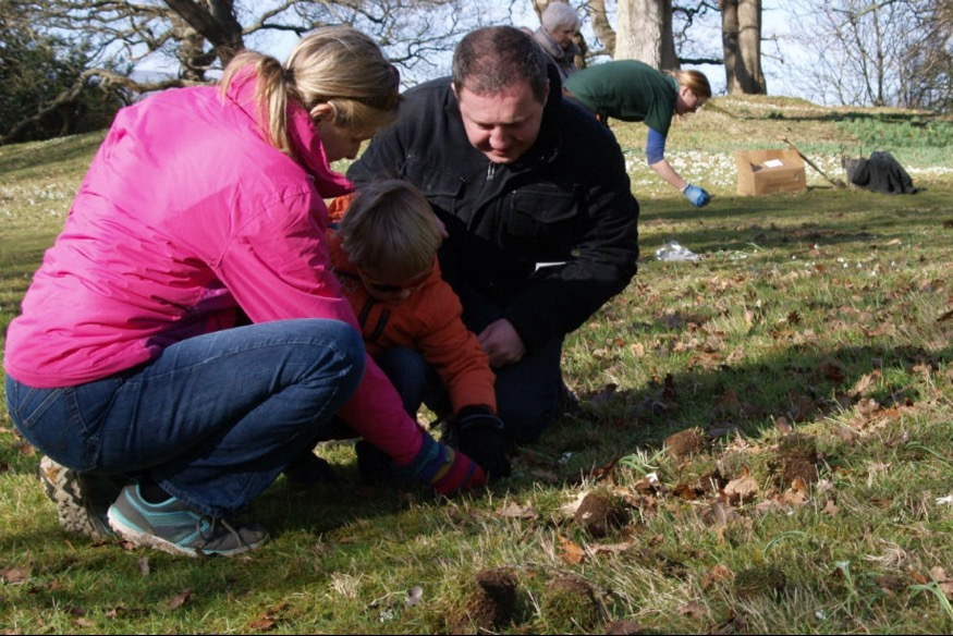 Bodnant needs your help to plant quarter of a million snowdrops
